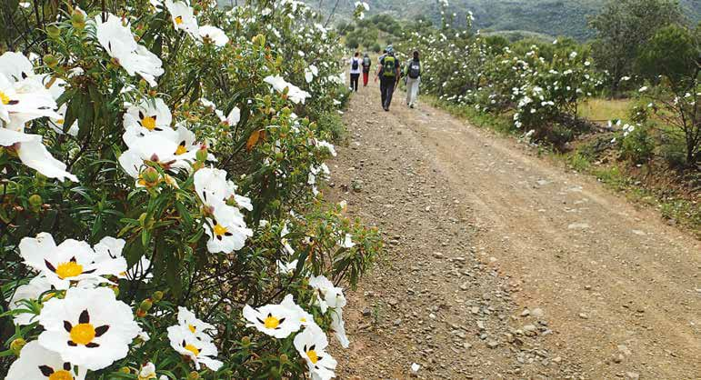 Walking holiday in Portugal - Via Algarviana 1-3